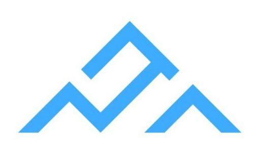 Chapman Insurance Solutions Logo
